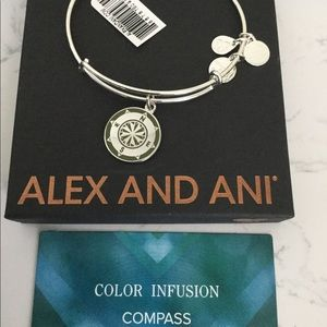 Alex and Ani color infused compass